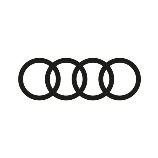 Talleres Manchegos Audi